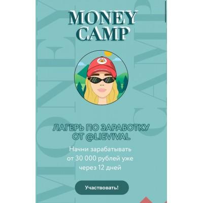 Лагерь по заработку Money camp. lievival